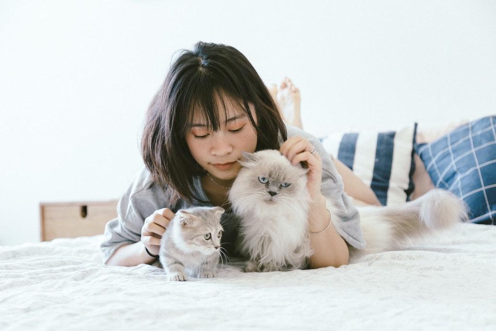 Pets_